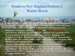 southern new england habitats i barrier beach