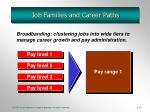 job families and career paths1