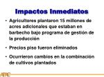impactos inmediatos