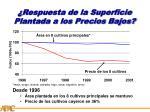respuesta de la superficie plantada a los precios bajos