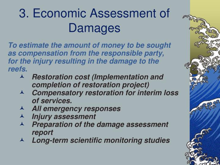 3. Economic Assessment of Damages