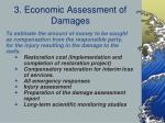 3 economic assessment of damages