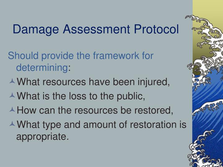 Damage Assessment Protocol