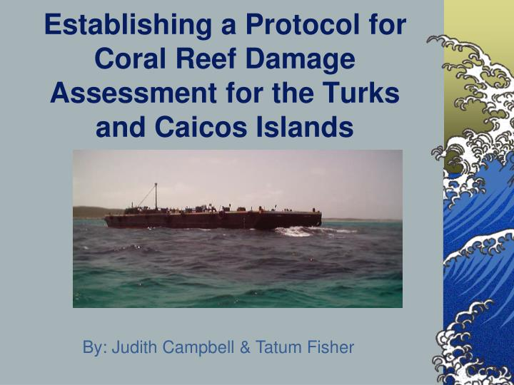 establishing a protocol for coral reef damage assessment for the turks and caicos islands n.