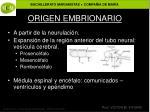 origen embrionario
