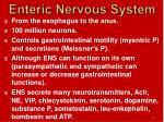enteric nervous system1