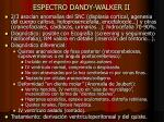espectro dandy walker ii