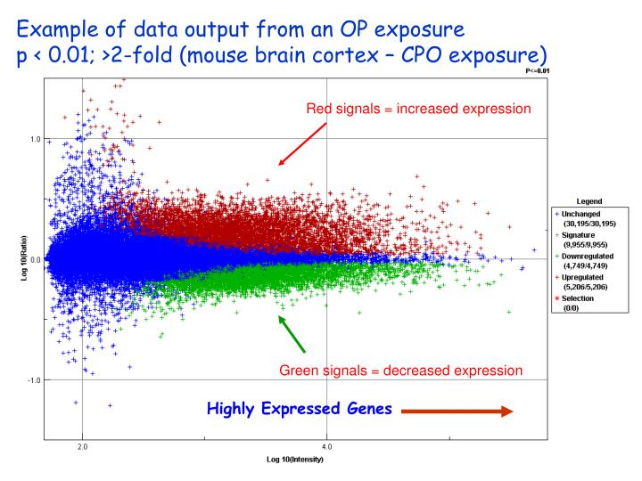 Example of data output from an OP exposure