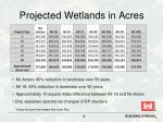 projected wetlands in acres