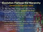 evolution flattens the hierarchy darwin s dangerous ideas