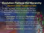 evolution flattens the hierarchy darwin s other dangerous idea4