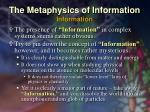 the metaphysics of information information1