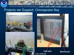 projects we support chesapeake bay