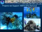 projects we support nwhi dfg removal