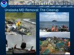 unalaska md removal the cleanup