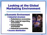 looking at the global marketing environment1