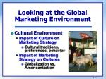 looking at the global marketing environment3