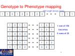 genotype to phenotype mapping