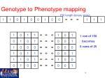 genotype to phenotype mapping