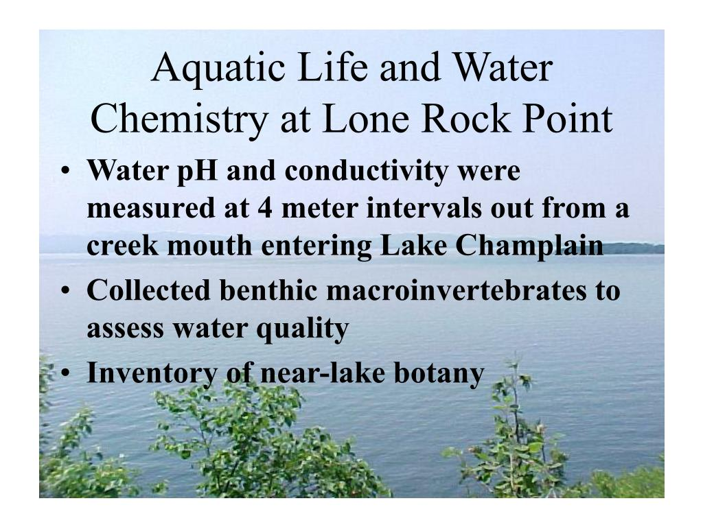 Aquatic Life and Water Chemistry at Lone Rock Point