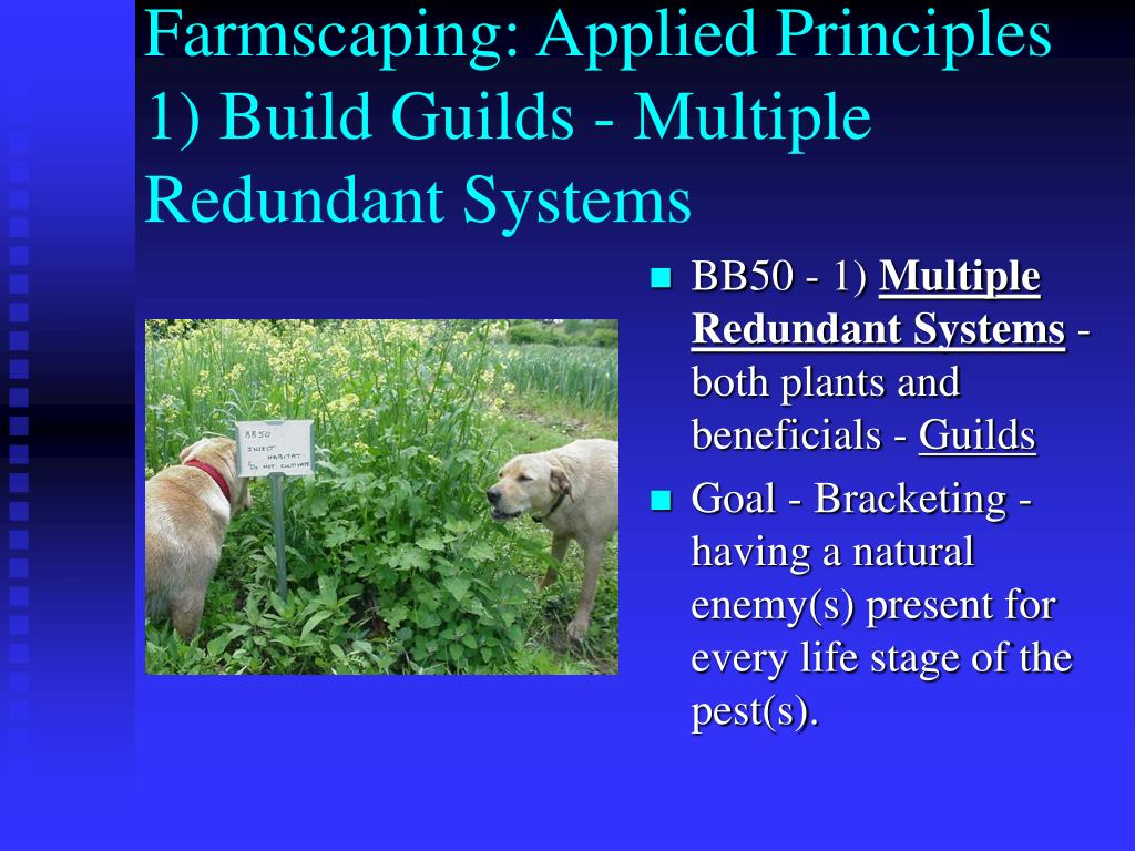 Farmscaping: Applied Principles