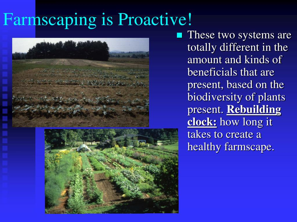 Farmscaping is Proactive!