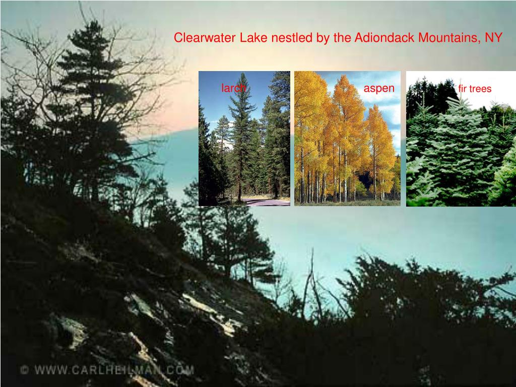 Clearwater Lake nestled by the Adiondack Mountains, NY