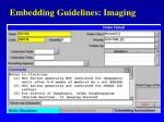embedding guidelines imaging