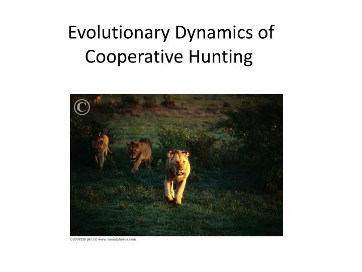 Evolutionary Dynamics of