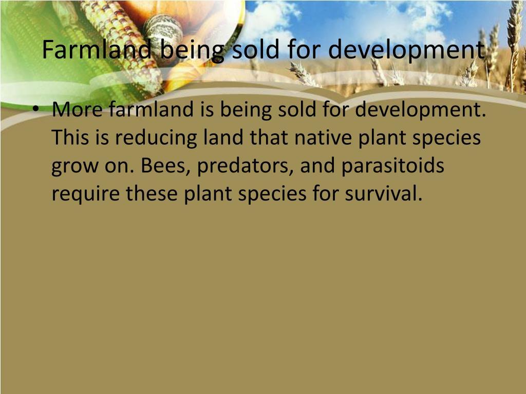 Farmland being sold for development