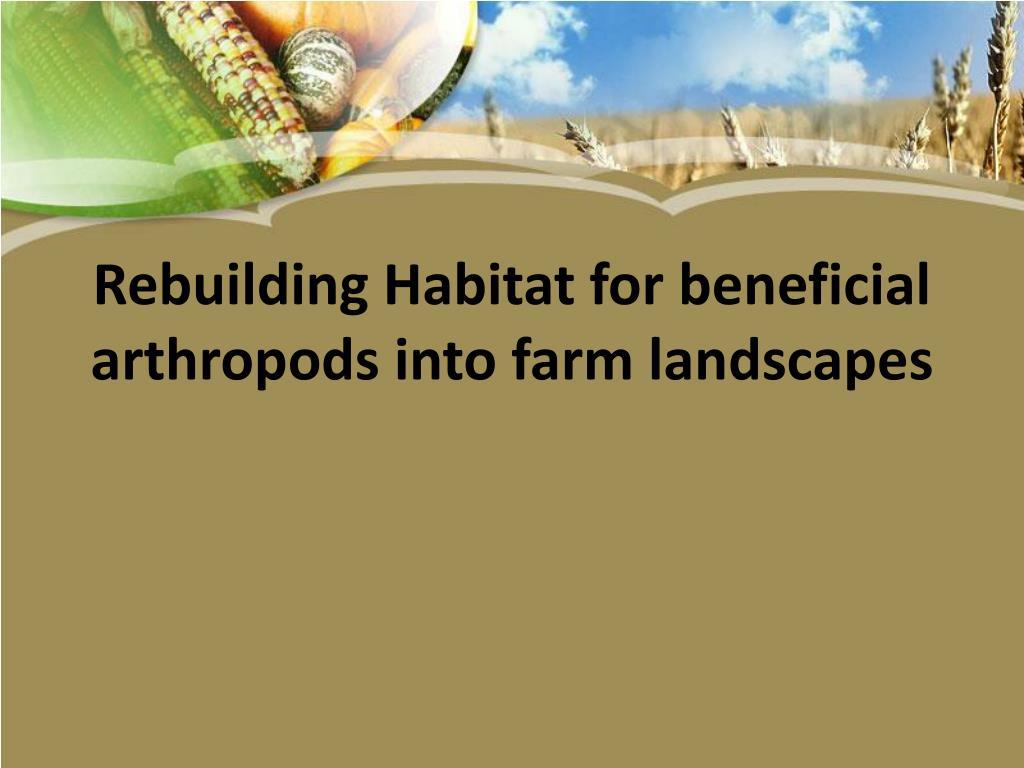 Rebuilding Habitat for beneficial arthropods into farm landscapes