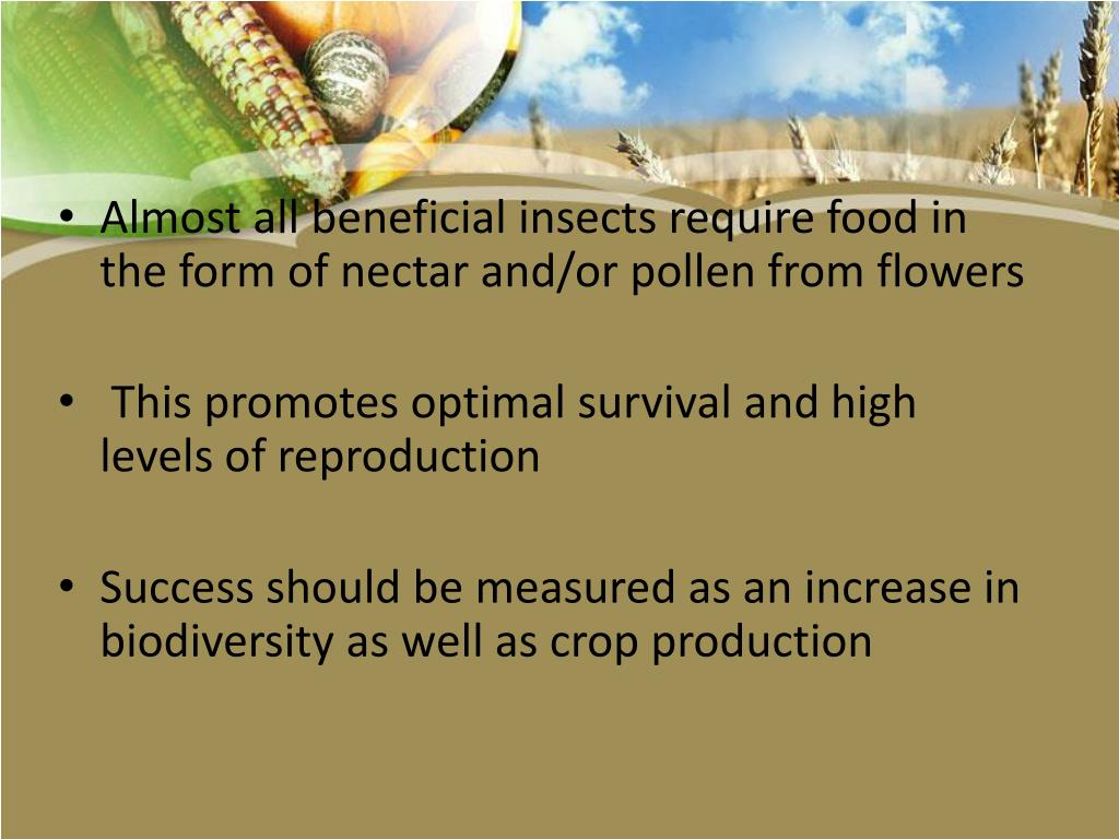 Almost all beneficial insects require food in the form