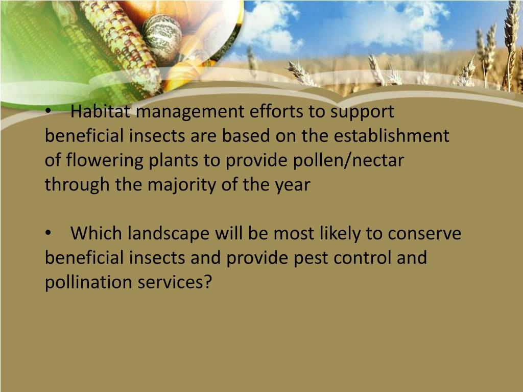 Habitat management efforts to support beneficial insects are based on the establishment of flowering plants to provide pollen/nectar through the majority of the year