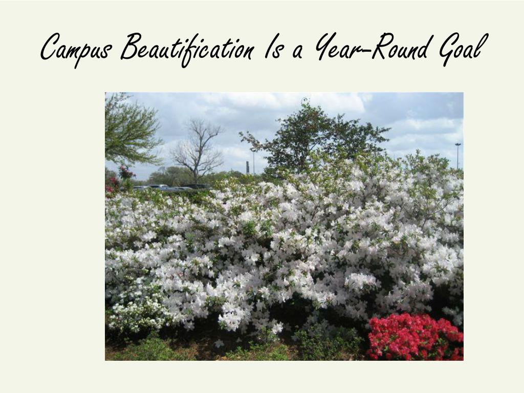 Campus Beautification Is a Year-Round Goal