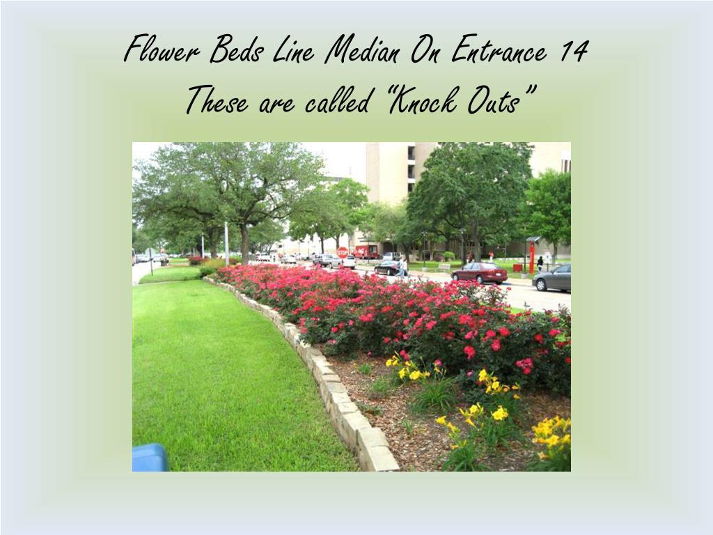 Flower Beds Line Median On Entrance 14