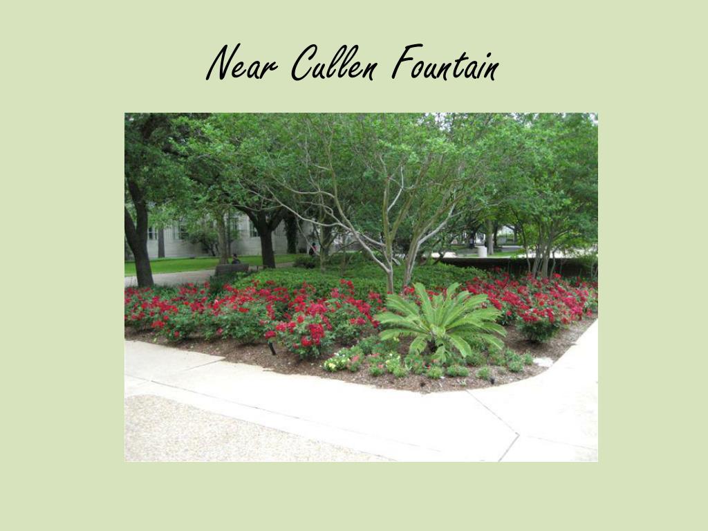 Near Cullen Fountain