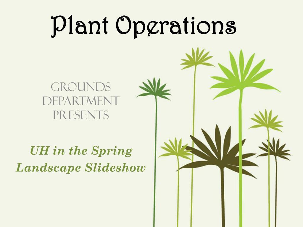plant operations l.
