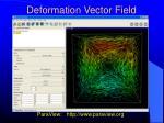 deformation vector field
