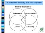 the ethics of genetically modified organisms
