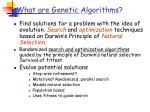 what are genetic algorithms