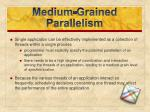 medium grained parallelism