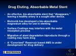 drug eluting absorbable metal stent
