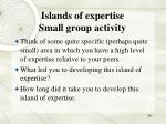 islands of expertise small group activity