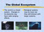 the global ecosystem