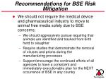 recommendations for bse risk mitigation