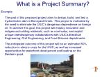 what is a project summary5
