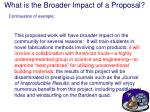what is the broader impact of a proposal20