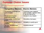 customer choice issues