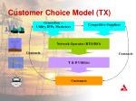 customer choice model tx
