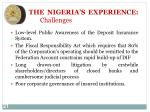 the nigeria s experience challenges